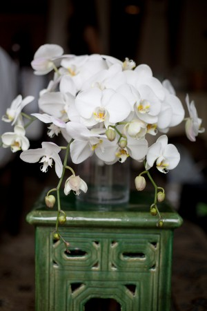White-Moth-Orchid-Floral-Centerpiece