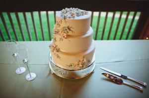 elegant-biltmore-estate-wedding-by-two-ring-studios-1