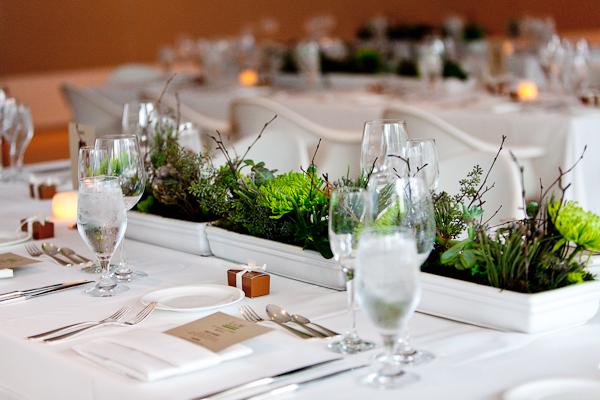 Modern green succulent branch centerpiece elizabeth anne for Modern centerpieces