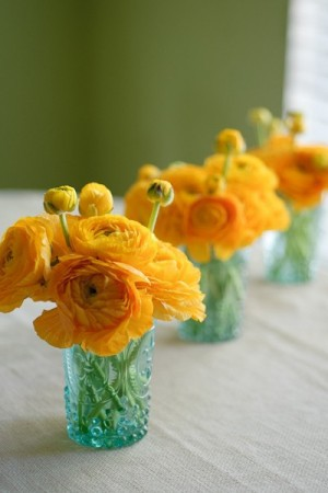 yellow-and-turqouise-flowers-ranunculus