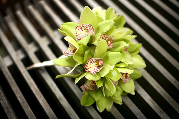 Green-Orchid-Bouquet