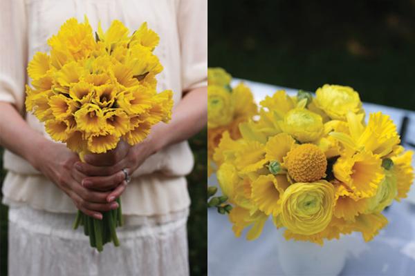 modern-yellow-daffodils