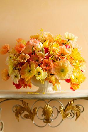 orange-and-yellow-poppies
