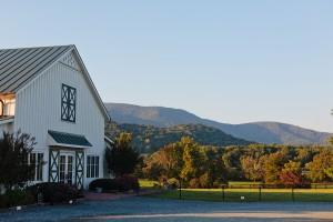 Blue-Ridge-Mountains-Wedding-8