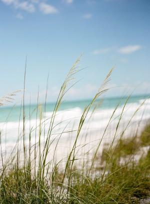 Elegant-Pink-Florida-Beach-Wedding-by-Melissa-Schollaert-Photography-6