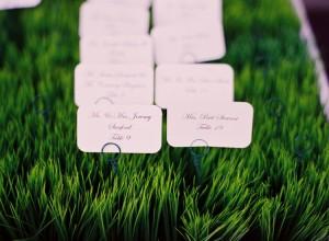 Grass-Escort-Card-Tray