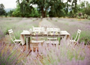 Wedding-in-a-Lavender-Field