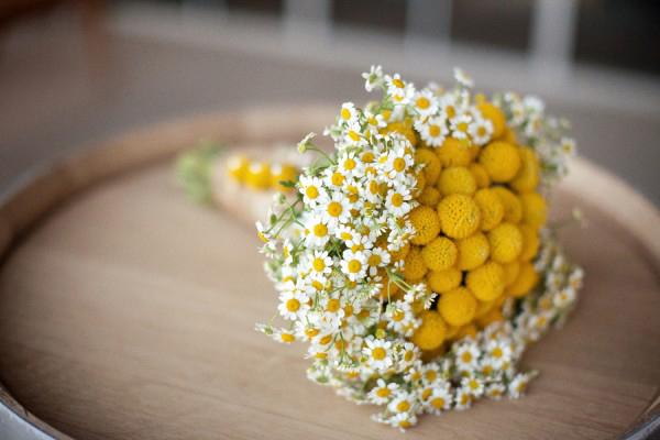 Craspedia and Chamomile Bouquet