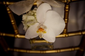 Orchid-Chair-Decor