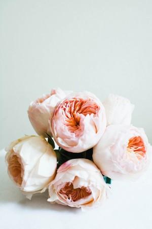 Pink-Rose-Wedding