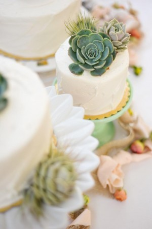 Succulent Cake Toppers