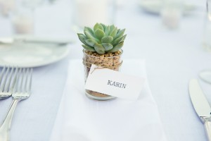 Succulent Wedding Favors 1