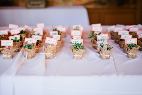 Succulent Wedding Favors - Elizabeth Anne Designs: The Wedding Blog