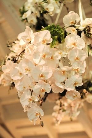 Phalaenopsis Orchid Wedding Decor