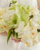 Amaryllis and Phalaenopsis Orchid Bouquet