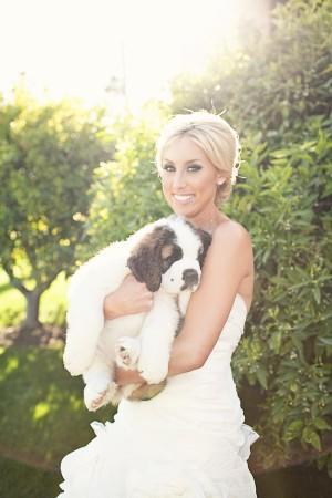 Bridal Portrait Ashley Rose Photography 2