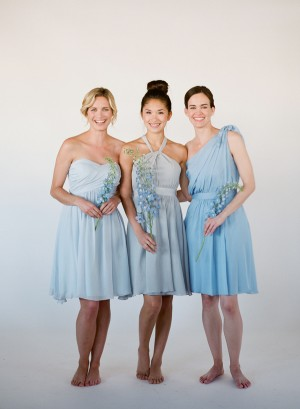 Cornflower Blue Bridesmaids Dresses Little Borrowed Dress 4