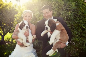 Couple Wedding Portrait Ashley Rose Photography 1