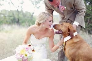 Dogs In Weddings 11