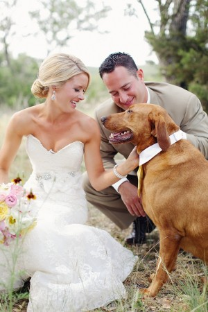 Dogs In Weddings 21
