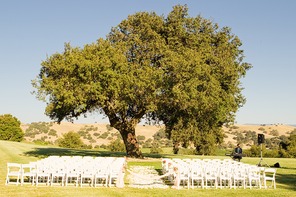 Outdoor Ceremony Under Tree