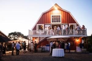 Rustic Vineyard Wedding Braedon Photography 13