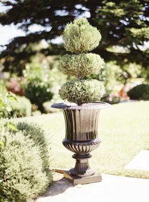 Rustic Vineyard Wedding Braedon Photography 4