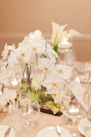 Orchid and Votives Centerpiece