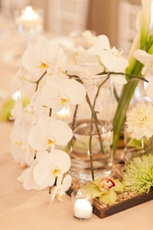 Orchid in Vase Table Decor