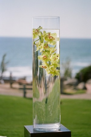 Orchids in Vase of Water