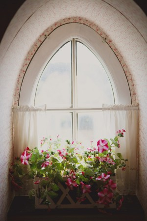 Pink Flowers in Window Box