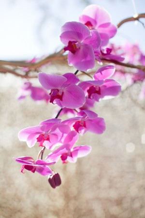Purple Orchid Branch Decor