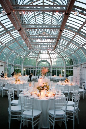 The Palm House Reception