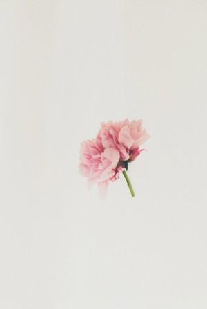 Pink Peonies in Wedding Flower Arrangements