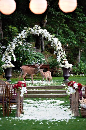 Red And White Outdoor Wedding Ceremony Decor
