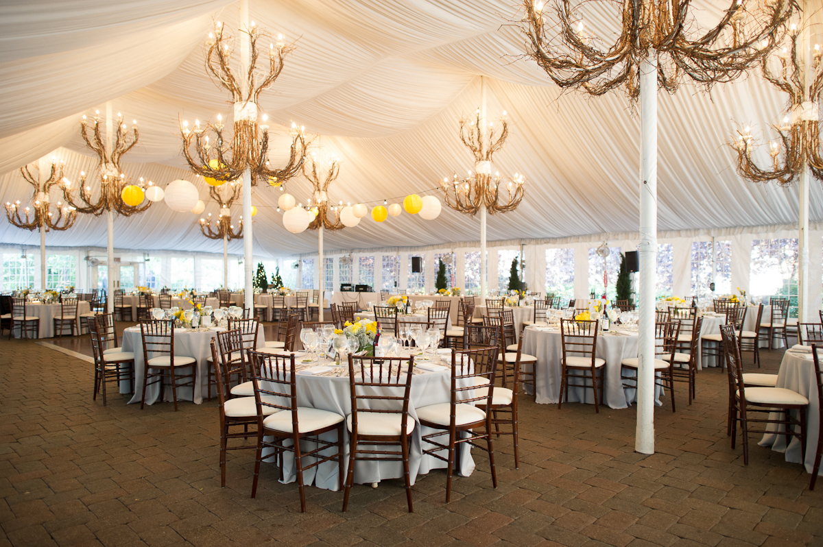 White reception tent with branch chandeliers elizabeth anne white reception tent with branch chandeliers aloadofball Choice Image