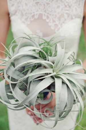 Air Plant Bridal Bouquet