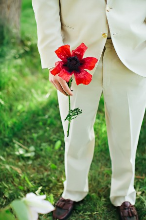 Groom in Cream Suit Holding Red Poppy1