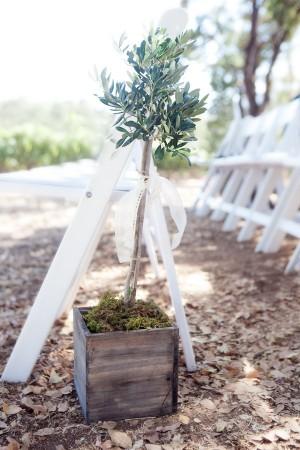 Olive Tree Ceremony Aisle Marker