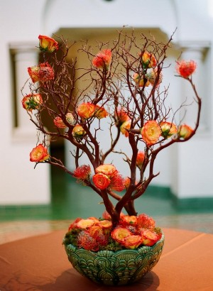 Orange Circus Roses on Potted Tree