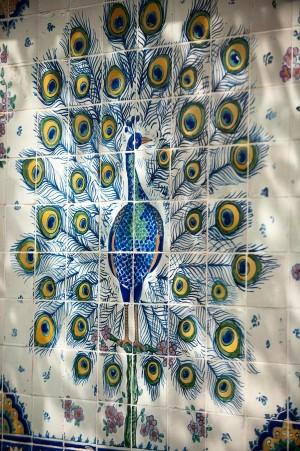 Peacock Spanish Tiles at Art Museum