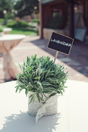 Potted Lavender With Lace Wrap