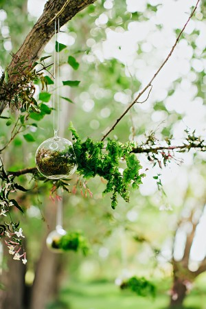 Round Glass Terrariums Hanging From Branches1