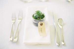 Succulent Wedding Favor