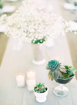 Succulent and Baby's Breath Centerpiece
