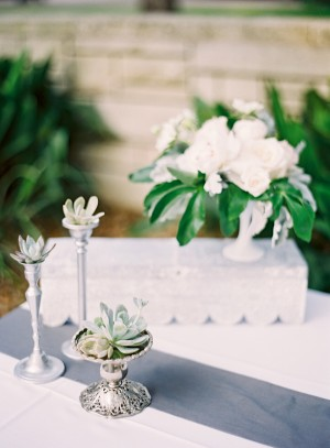 Succulents in Silver Vases