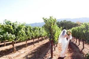 Vineyard Wedding Julie Mikos