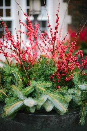 Holiday Greenery Decorating Ideas