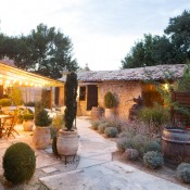 Outdoor Vineyard Reception Ideas