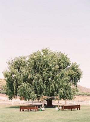 Outdoor Wedding Ceremony Beneath Tree